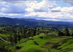 Paisaje Entrerríos - Antioquia (alexbetancurescobar) Tags: paisajes paisaje verde green 6d canonistas canon landscape antioquia colombia