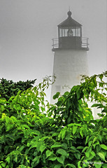 A foggy day at Pemaquid Point (pandt) Tags: fog leaves lighthouse outdoor pemaquid maine newengland coast coastal ocean grey daylight canon eos slr rebel t1i seaside flickr