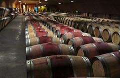 11-Chai Haut-Selve (balese13) Tags: 2012 gironde hautselve lesgraves barriques chai vignoble vin