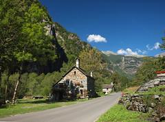 Alpine road (filippo rome) Tags: tessin switzerland swiss valbavona ticino alpes alpi alps colors colori mountains montagna landscape panorama trees alberi summer svizzera