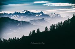 Volontaire (Fabrice Le Coq) Tags: vert cransmontana monatgne forêt ciel montagne arbre brume paysage neige nuage ombre valais suisse alpes