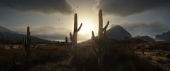 Heading West | GTAV (Razed-) Tags: west western cactus desert grand theft auto v gtav rockstar games naturalvision remastered graphics mod