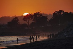 We'll all be gone for the summer (PeterThoeny) Tags: santacruz california people silhouette peoplesilhouette outdoor evening clear seascape red gold goldenhour sky tree dusk sunset water sea coast beach ocean pacific pacificocean serene sony a7 a7ii a7mii alpha7mii ilce7m2 fullframe tamron tamronsp150600mmf563 1xp raw photomatix hdr qualityhdr qualityhdrphotography fav200 landscape