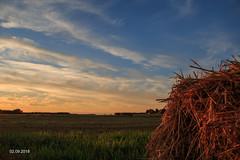 Auringonlasku olkipellolla (AaJii) Tags: alajoki auringonlasku pelto maaseutu lapua