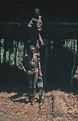 visser024b (Stichting Papua Erfgoed) Tags: asmat nederlandsnieuwguinea pace irianjaya zuidpapua casuarinekust stichtingpapuaerfgoed papuaheritagefoundation papua voormalignederlandsnieuwguinea irianbarat anthonyvankampen