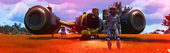 Fields of Gold (D U B L) Tags: nms nomanssky scifi hello games video no mans sky havoc space trees foliage panorama game pc computer graphics outdoor dof photomode gaming photography nvidia gpu 15 next landscape grass anomaly helmet explorer red military installation
