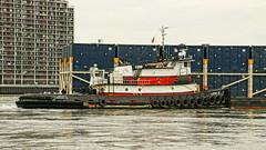 Captain D (thetrick113) Tags: captaind tugboatcaptaind norfolktugcompany tugboat hellgate newyorkcity city barge deckbarge garbagebarge workingvessel vessel sonyslta65v eastcoast randallsisland marine container