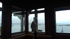 20180810_150535 (alicja.rose) Tags: kråkeslottet ormøya island wind ocean havet vinden