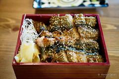 20180916-05-Unagi don at Osaka Izakaya in Hobart (Roger T Wong) Tags: 2018 australia hobart iv japanese metabones osakaizakaya rogertwong sigma50macro sigma50mmf28exdgmacro smartadapter sonya7iii sonyalpha7iii sonyilce7m3 tasmania dinner eel food unagidon