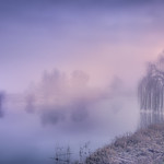 Land of foggy thumbnail
