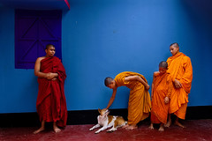 Monk Boys (Md Aman Ullah Minhaz) Tags: child children monk boys religious bu buddhist photography canon travel primelens bangladesh color orphanage coxsbazar dog love animel group