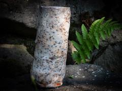 Mon second vase