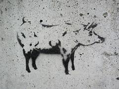 Pig a la Banksy? (jamica1) Tags: salmon arm bc british columbia canada pig stencil art concrete