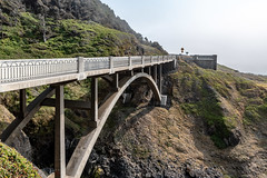 Cook's Chasm Bridge (tony p photos) Tags: tonypphotos d500 nevada nikon reno florence oregon unitedstates us ocean pacificcoast
