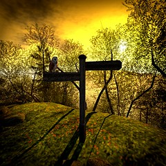 Choose Wisely (Loegan Magic) Tags: secondlife soul2soul owl sign crossroads woods trees branches grass path sky sunset