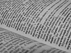 1917  A world of words (Andy - Not too busy) Tags: bw bbb book ddd definitions dictionary pages ppp words www