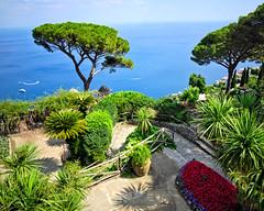 Villa Rufolo (fabsit) Tags: amalficoast italy ravello garden sea blue palm idyllic sunny