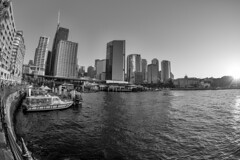 Sunset on Sydney Harbour... (pboolkah) Tags: sydney newsouthwales australia au sunset harbour boats boat skyline fisheye canon canon5d