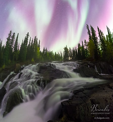 Borealis Science & Photo Tours [8622] (josefrancisco.salgado) Tags: canada d5 nikon northernlights northwestterritories sigma sigma14mmf18dghsmart yellowknife astrofotografía astronomy astronomía astrophotography aurora auroraborealis aurorae auroras borealforest bosque bosqueboreal cascada cascade catarata cielonocturno estrellas exposiciónlarga flora forest longexposure night nightsky stars waterfall woods