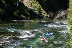 "River recreation on the ""Wild and Scenic"" north Umpqua River (Forest Service Pacific Northwest Region) Tags: 50th 50thanniversary columbiariver esa forest glide july northumpquariver or oregon umpqua umpquanationalforest bait boat boater boaters boating boats clean endangered environment fish fishing fishingguide fly flyfishing guide kayak kayaker kayaking kayaks natural nature northumpqua outdoors outfitter outfitterguide people raft rafter rafters rafting recovery recreation river salmon scenic steelhead stream summer tackle threatened visitors water whitewater wild wildscenic wildandscenic wildandscenicriveract wildlife unitedstates us"