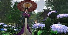 Last Kiss of Summer (LiangScorpio) Tags: rain throwback oiran kimono sl secondlife bluelotus hydrangea
