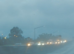 Pen Expers (Monotown Lights) Tags: photography road highway morning rain blue cars lights lampposts trees rainy nikoncoolpixl820 nikon coolpixl820