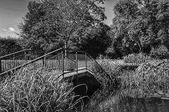 Beautiful Burnby Hall Gardens!😊 (LeanneHall3 :-)) Tags: blackandwhite mono bridge lake trees grass leaves branches sky clouds landscape burnbyhallgardens burnby canon 1300d groupenuagesetciel