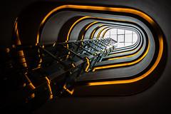 Up (Chris Buhr) Tags: qf hotel indoor interior interieur staircase aufzug lift architektur architecture vienna house dresden sachsen saxony leica m10 black schwarz