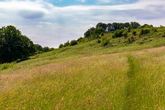 Dumpdon Hill Fort