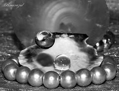 Perlas (bruixazul poc a poc...) Tags: perlas gotas agua raindrops concha pulsera nácar prismadecolores bn bw macro monocromo