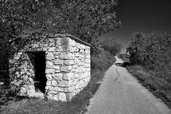 Little Hut (S_Peter) Tags: burgenland breitenbrunn purbach neusiedlersee austria österreich summer sommer wein hut bw blackwhite schwarzweiss leica monochrom type 246 voigtländer ultron f18 21mm heliopan orange filter