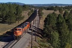 BNSF 9173 USAFA 12 Sep 18 (AK Ween) Tags: bnsf bnsf9173 emd sd70ace usafa airforceacademy colorado jointline train railroad