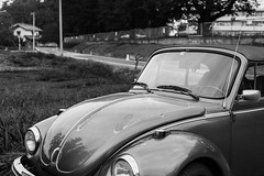 Beatle (odeleapple) Tags: nikon d810 afs nikkor 50mm beatle bug monochrome bw convertible