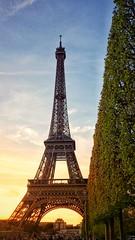 The Eiffel Tower (Yumna Rameez) Tags: eiffelfower toureiffel paris france travelphotography eveninginparis champsdemars