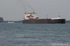 gloint_acent81818_rb (rburdick27) Tags: tug barge tugbarge glostrander integrity asc americansteamshipcompany americancentury stclairriver
