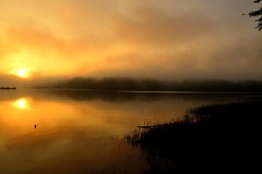 Dawn. (Photolove2017) Tags: sky sunrise silhouettes tiaphoto sun reflection ottawagatineau canada quebec ontario summer landscape layers photolove2018 park mist nikondx d3100 dawn