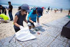 IMG_2724 (Ho Chi Minh City & Hanoi) Tags: scd rse csr beach vietnam teambuilding coworkers ecology plastics seminar workshop ccifv cci ccifi france