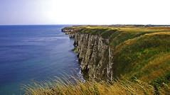 White Cliffs of Flamborough. (Gerry Hat Trick (was Wontolla1)) Tags: wednesdaywalk yorkshire east flamborough head walking walk hiking hike chalk cliff cliffs blue sea water