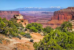 Shafer Canyon Viewpoint Trail, Canyonlands National Park Utah (PhotosToArtByMike) Tags: shafercanyon canyonlandsnationalpark utah ut shafercanyonviewpointtrail canyonlands islandinthesky plateau lasalmountains limestone erosion desert backcountry scenic canyon landscape