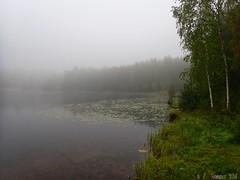 Foggy lake (PeepeT) Tags: sumu fog tesomajärvi järvi lake water vesi tampere finland autumn syksy fall