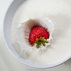 J'aime ta fraise! (Yves Kéroack) Tags: bowl hautevitesse milk apétissant whitebackground lait liquide apetizing highspeedphotography motion bol fraise mouvement strawberry fondblanc fruit splash liquid