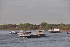 Schiffsverkehr zwischen Düsseldorf Kaiserswerth und Wittlaer (Haeppi) Tags: düsseldorf rhein rhine kaiserswerth
