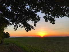 Sunset (Marc Sayce) Tags: sundown sunset countryside fields ropley soke four marks hampshire summer autumn september 2018