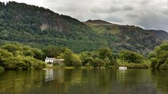 """Greens"" (42jph) Tags: nikon d7200 lake district cumbria england uk derwentwater keswick water waterscape landscape"