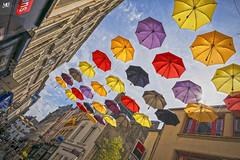 Sous les parapluies de Cherbourg DxOFP LM+21 1006501 (mich53 - thank you for your comments and 5M view) Tags: cherbourg street rue ciel cielbleu bluesky parapluie parapluiesdecherbourg leicamtype240 superelmarm21mmf34asph colors couleurs télémètre rangefinder entfernungsmesser normandie manche