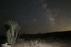 Mars and the Milky Way (kimpossible pics) Tags: outdoors wildlife nature landscape trees desert californiadesert joshuatree park nationalpark joshuatreenationalpark joshuatreenp nationalparkservice stars astrophotography milkyway galaxy sky skies mars planet