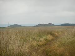 DSCN5623 (norwin_galdiar) Tags: bretagne brittany breizh finistere monts darrée nature landscape paysage