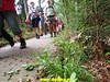 """2018-08-29 Bussum 25 Km (57) • <a style=""""font-size:0.8em;"""" href=""""http://www.flickr.com/photos/118469228@N03/43455390215/"""" target=""""_blank"""">View on Flickr</a>"""