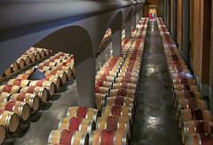12-Chai Haut-Selve (balese13) Tags: 2012 gironde hautselve lesgraves barriques chai vignoble