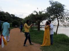 IMG_4960 (mohandep) Tags: madivala lakes bangalore wildlife scenery sun flowers insects birding buses